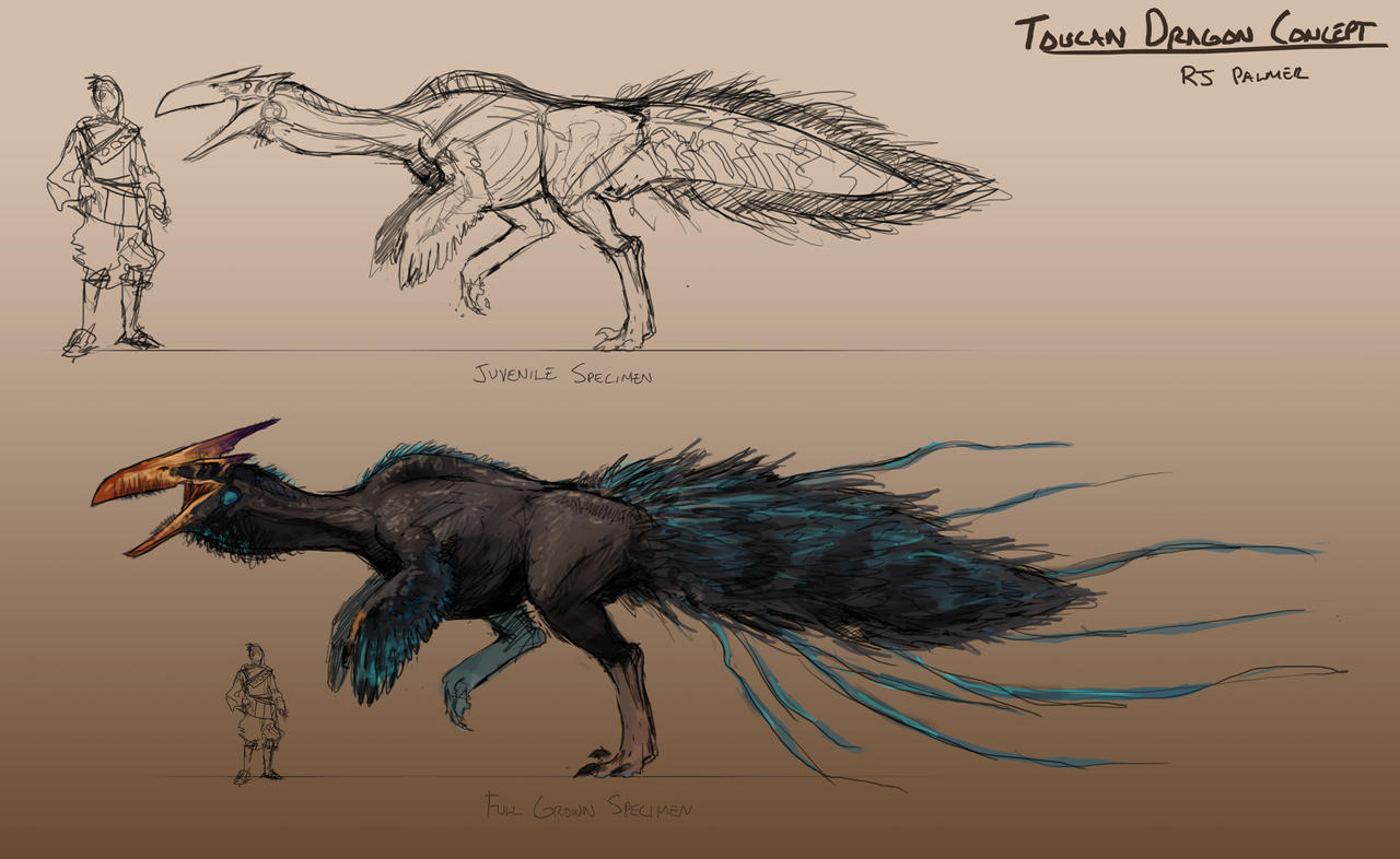 Toucan Dragon-Concept Sheet by arvalis