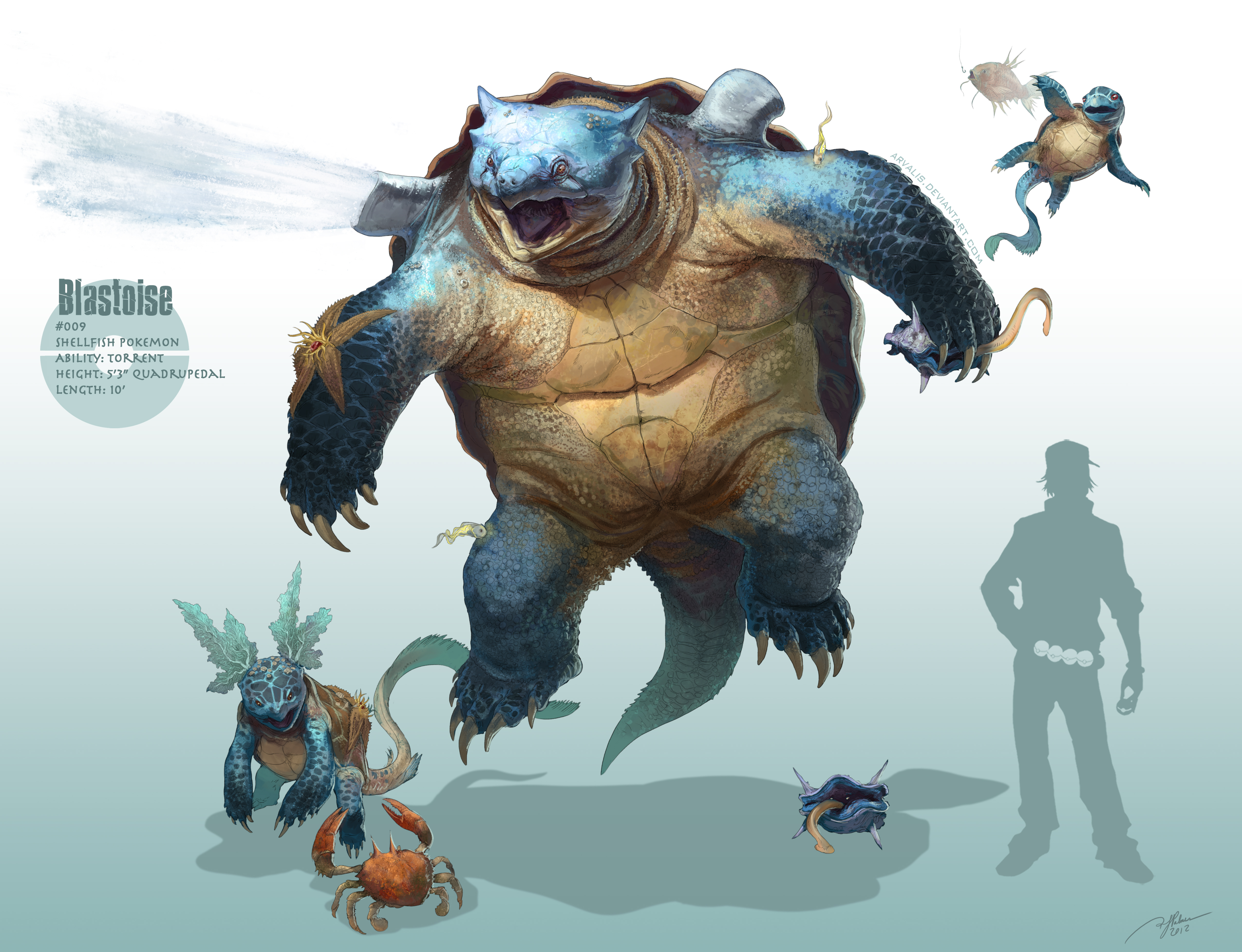 Real Life Pokemon Blastoise Images amp Pictures Becuo