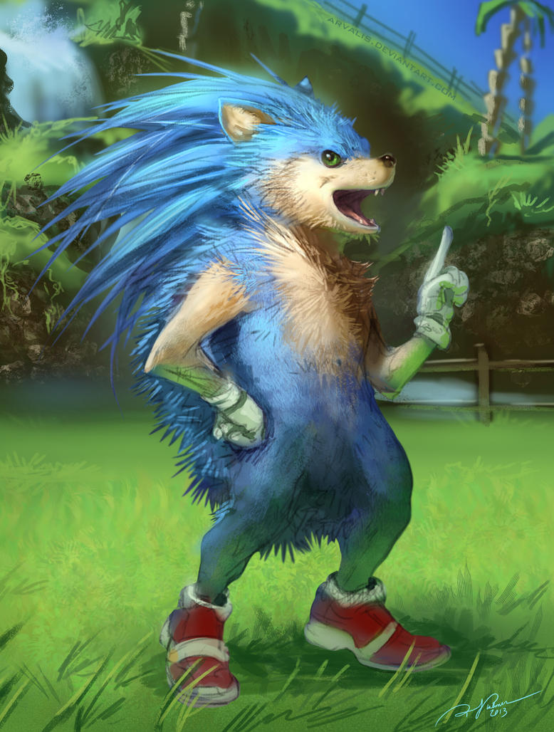Sonic the Realhog by arvalis on DeviantArt