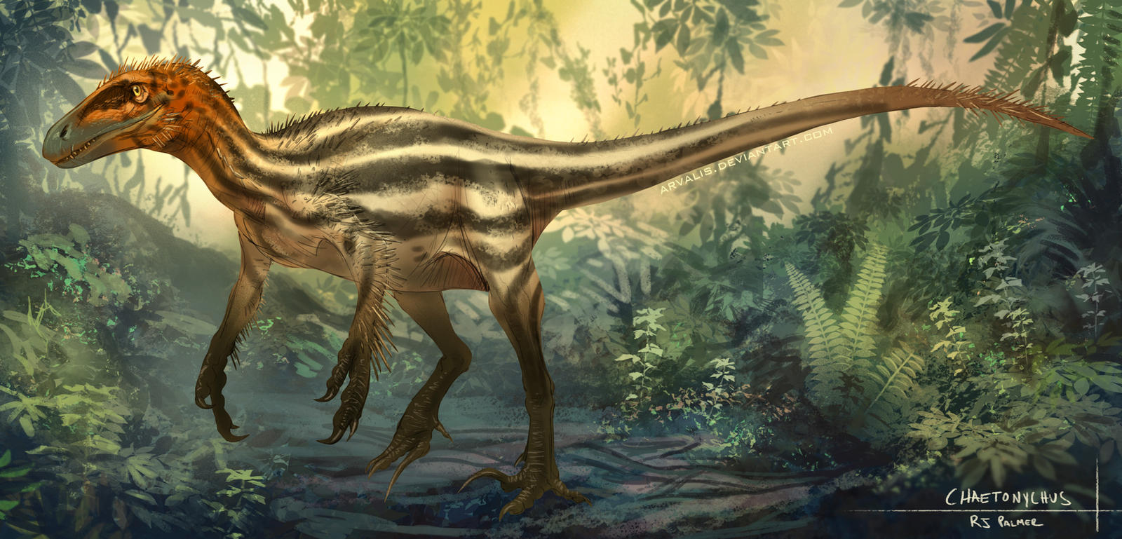Chaetonychus by arvalis