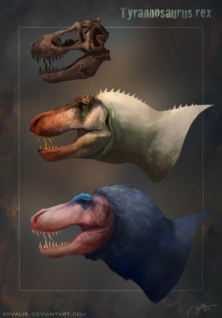 T. rex Reconstructions by arvalis