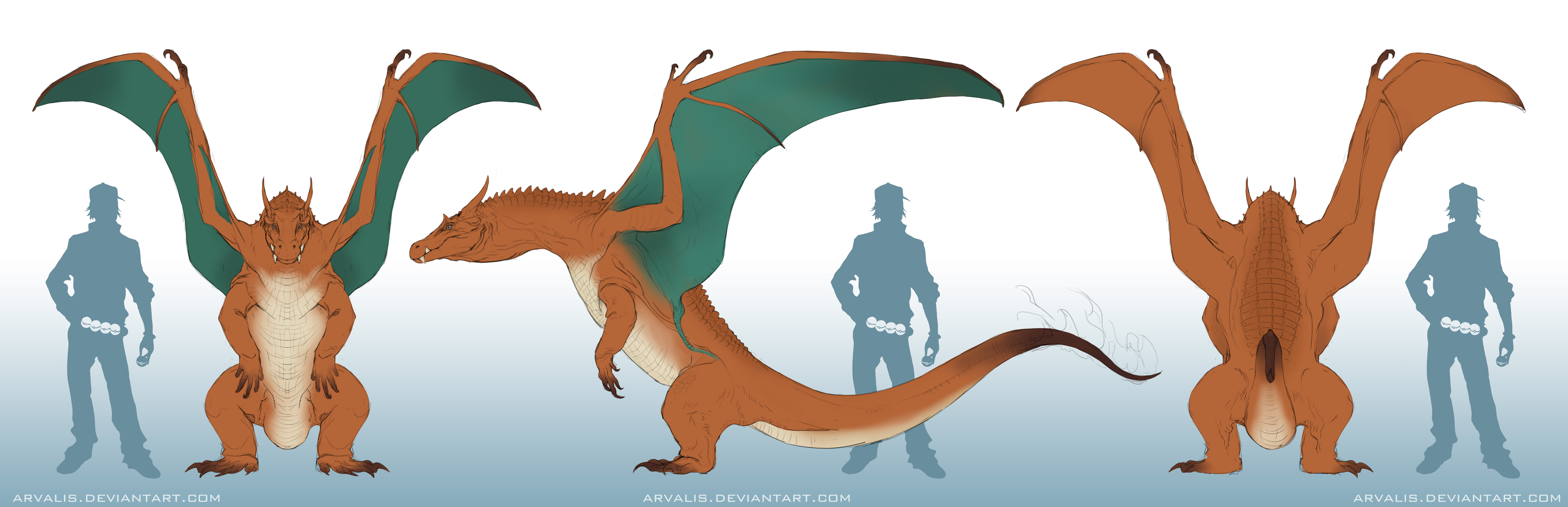 Charizard Orthographic by arvalis on DeviantArt Realistic Pokemon Charizard