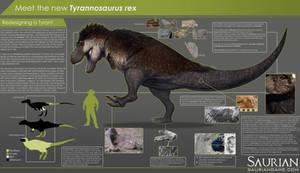 Saurian-T. rex Infographic