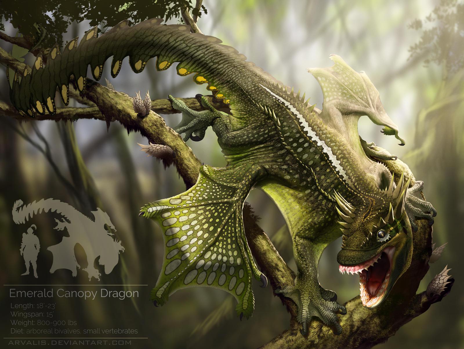 emerald canopy dragonarvalis on deviantart