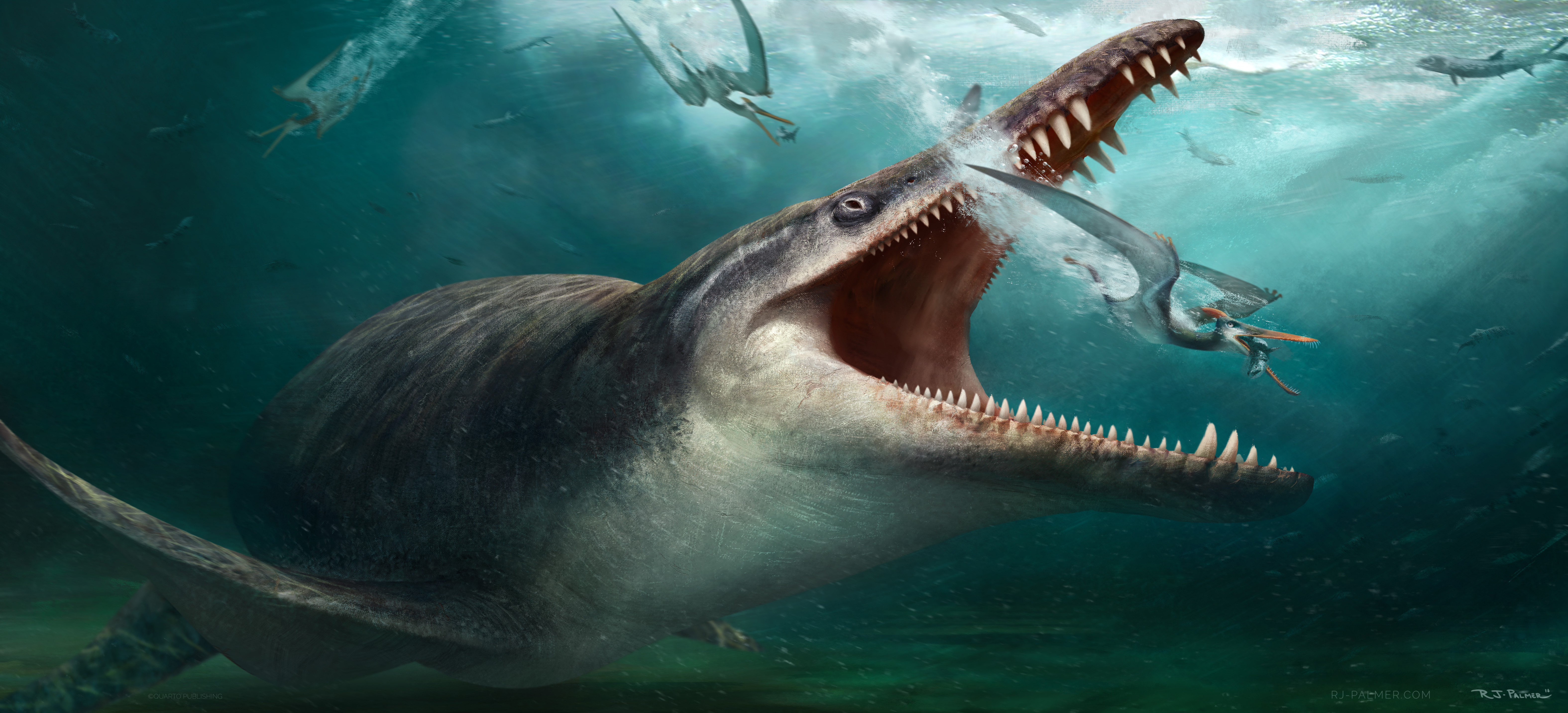 Named for the Greek titan Cronus, Kronosaurus was among the largest