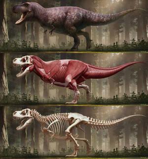 Tyrannosaurus rex-2018