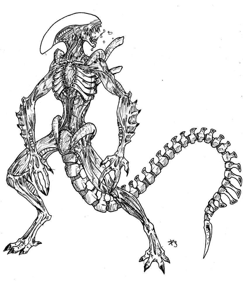 Xenomorph warrior by arvalis on deviantart Halo Alien Coloring Pages Vicious Alien Coloring Pages Vampire Queen Coloring Pages