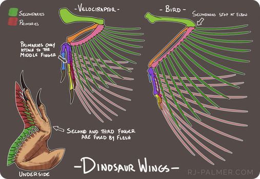 Mini Wing Tutorial