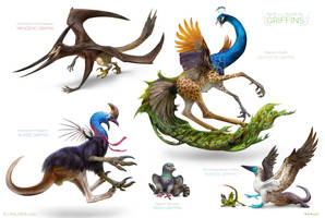 Rare and Unusual Griffins