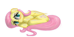 Fluttershy Curled Up