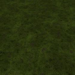 Dirt-grass-dark-full2-render