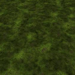 Dirt-grass-full2-render