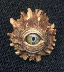 Dragon Eye 5