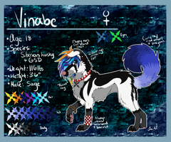 :Vinabe:Reference Sheet 2013: by h4lloween