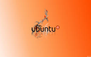 EgFox Ubuntu Orange HD 2010 by Eg-Art