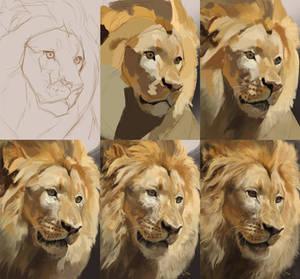 Leo (Steps)
