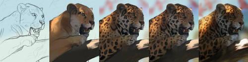 Jaguar Step Breakdown