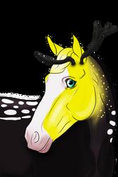 N5299 Vershka - Stallion