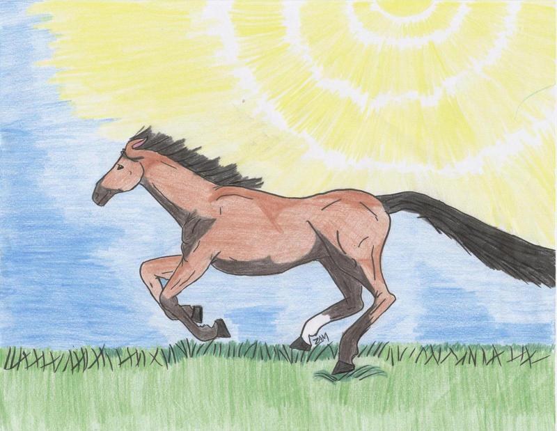 Horse by shalakazam
