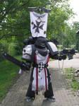 Holy warrior of Terra II