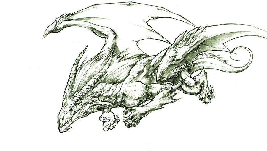 Dragons by xPokerx