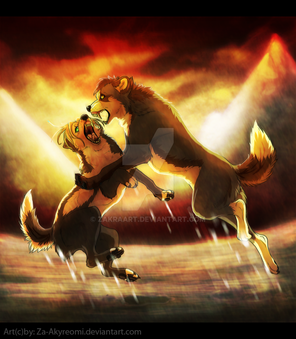 Fight -  Commission by ZakraArt
