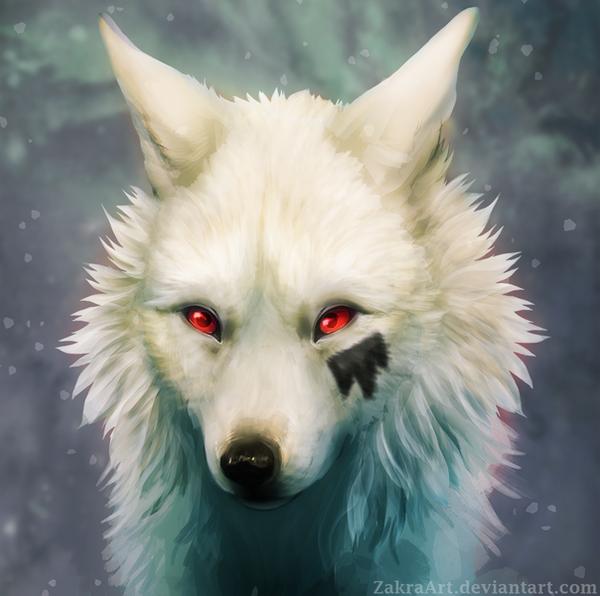 Small White Furry Dog