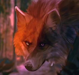 wolf by ZakraArt
