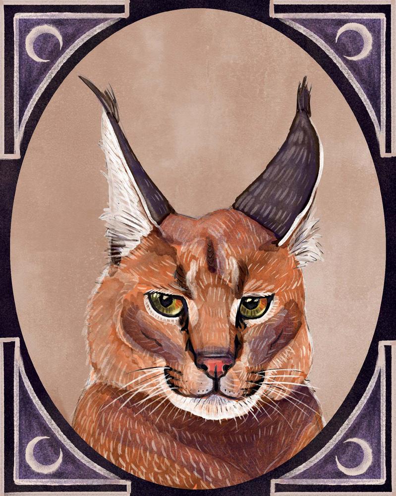 Lynx by gobsmackeroo