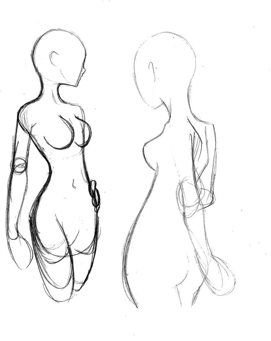 Basic Female Anatomy Doodle by ECH-ZTX on DeviantArt