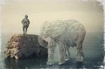 Water elefant