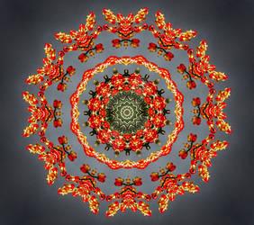 Vitality Kaleidoscope