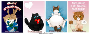 Cats by keevs