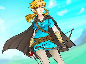 Zelda U - color by keevs