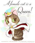 A female cat is a Queen