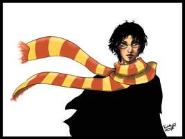Harry Potter by Strayfish
