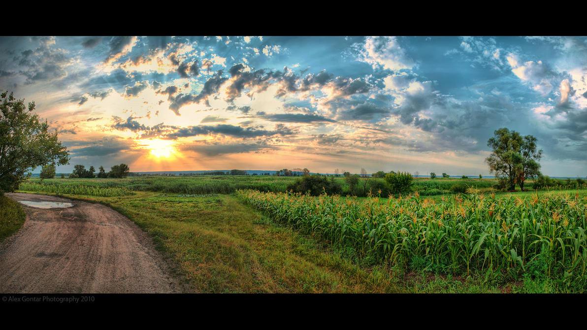 Ukraine pana. 103855 by AlexGontar