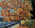 Stanley Park Tree - for the Autumn 2017 collection