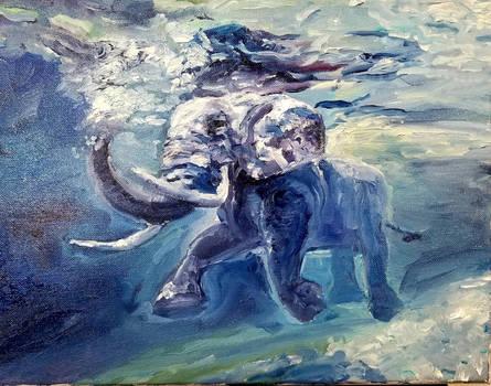 William's Elephant Friend