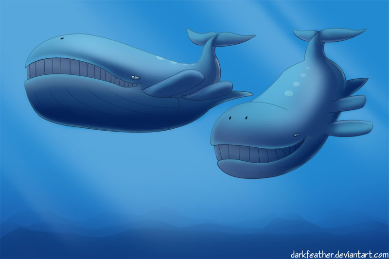 Pair of Wailord by DarkFeather on DeviantArt Wailord Wallpaper