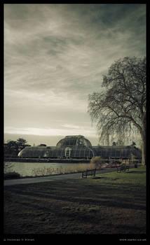 Kew Gardens Palm House colour