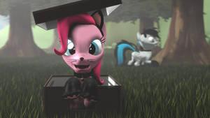 Kitty Tia