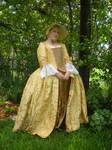 Gold Silk Gown