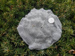 Chainkerchief - SS 20ga 1/8in - Draped