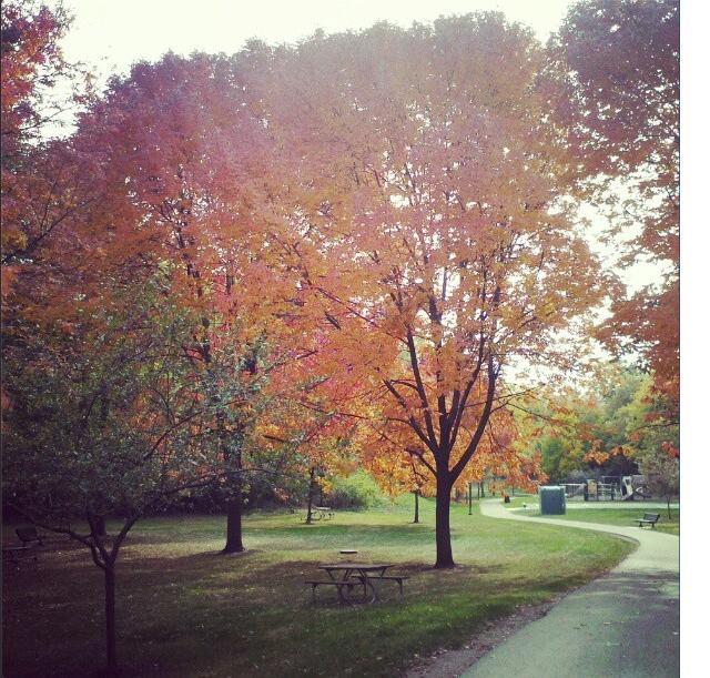autumn day by imaginaryfriend6