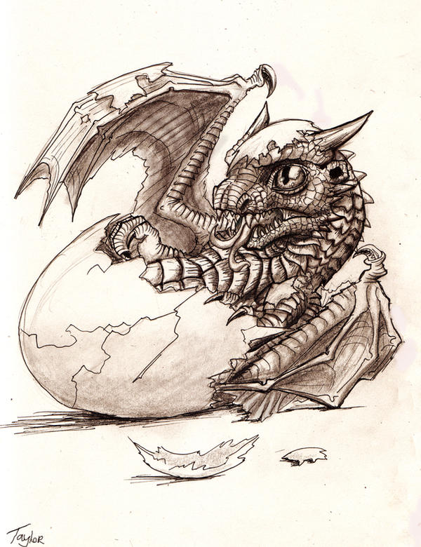 baby dragon hatching coloring pages - photo#33