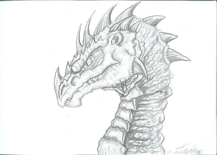 Old Dragons Head By Ruth Tay
