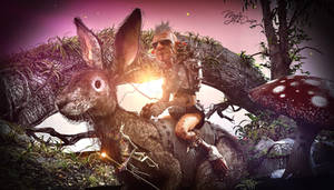 Dolb Ride the Hare