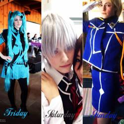 Anime Boston 2014 Lineup by DistantDireWolf
