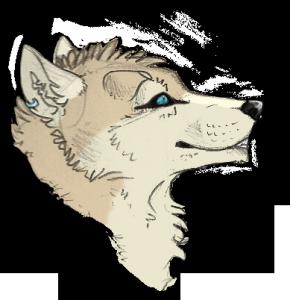 Lackota's Profile Picture
